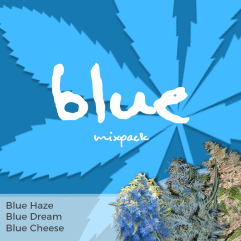 Blue Mixpack - Los Angeles Cannabis Club