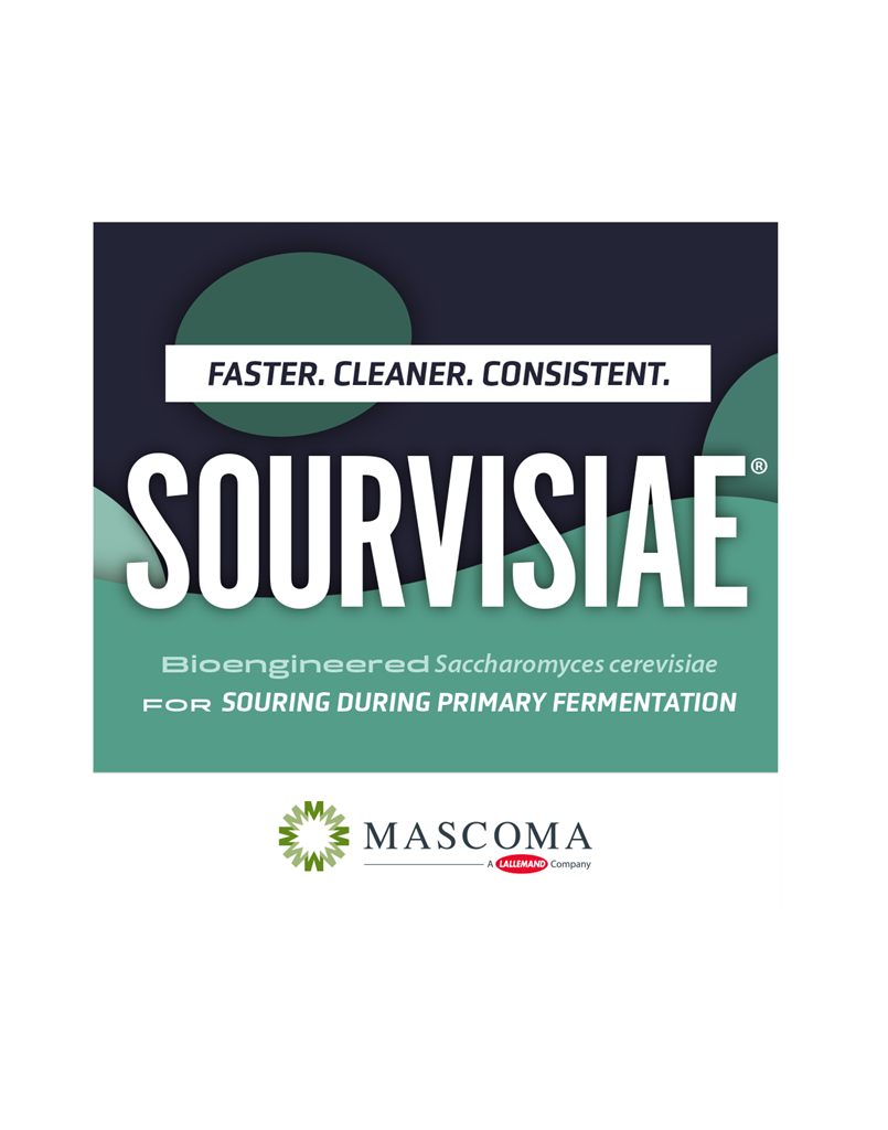 Sourvisiae Lactic-Producing Yeast (500g)