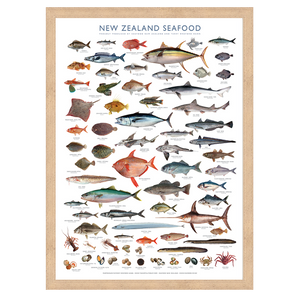 NZ Seafood collection archival print