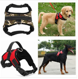 Happy Dog Outdoor Vest