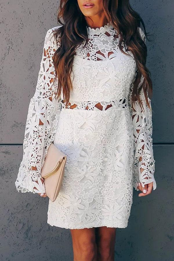 Elegant Floral Lace Paneled Cutout Mini Dress