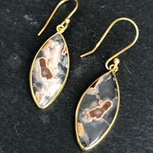 Load image into Gallery viewer, Stasia Agate Montana Earrings