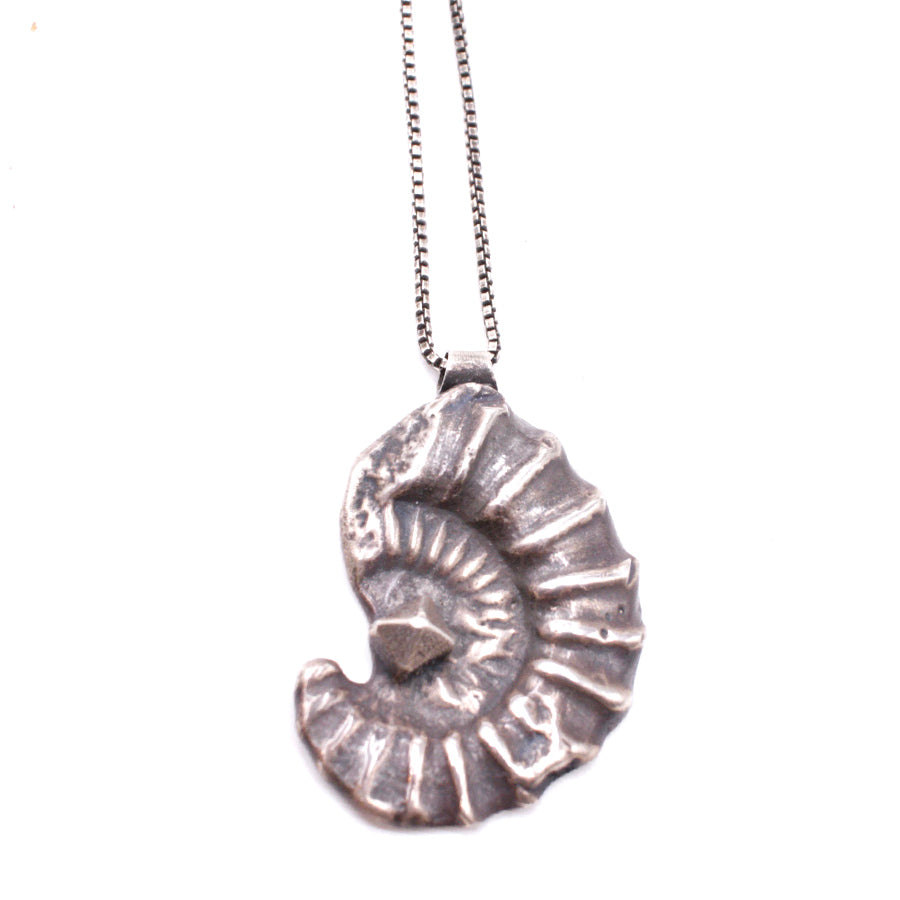Ammonite and Crystal Pendant