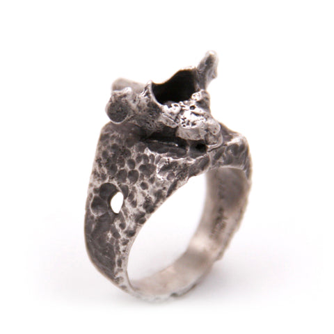 Decay Vertebrae Ring