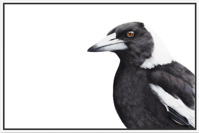 Magpie Canvas Wall Art