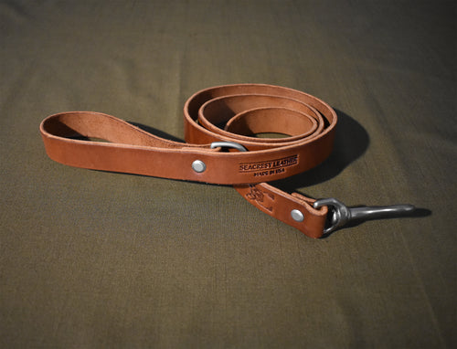 Franklin Dog Leash Standard