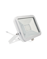 LED Floodlight (10W)