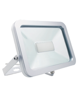 LED Floodlight (30W)