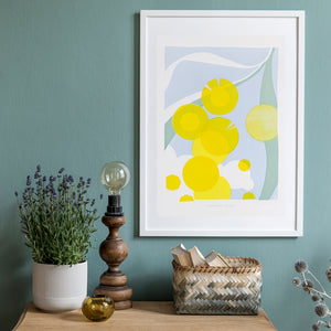 Golden Wattle - giclée print