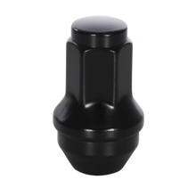 Load image into Gallery viewer, OEM Style Ford 21mm Hex Black Lug Nuts