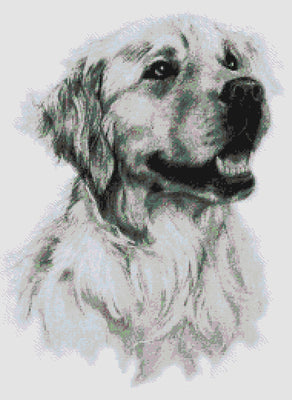 Amber Labrador Cross Stitch Pattern