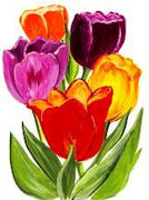 Tulip Colours Cross Stitch Pattern