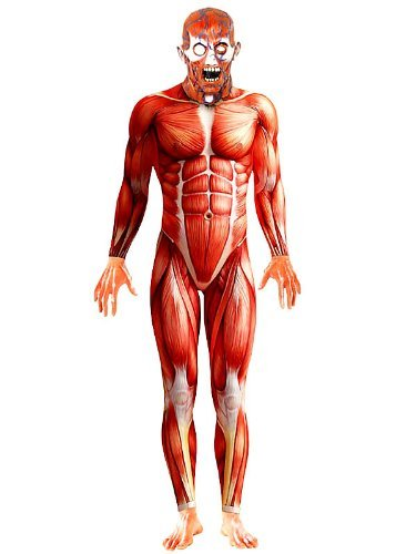 "Anatomy Man Costume, Red, with Bodysuit and Mask -  (Size: Chest 38""-40"", Leg Inseam 32.75"")"
