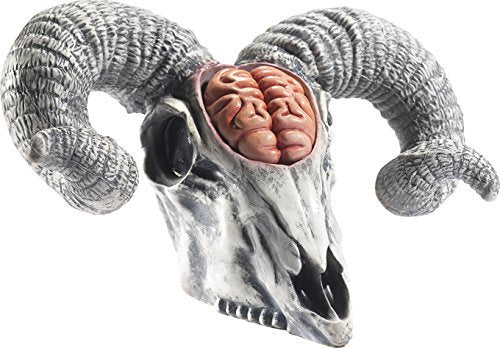 Latex Rams Skull Prop with Exposed Brain, Natural, 33x20x19cm/13x8x7in