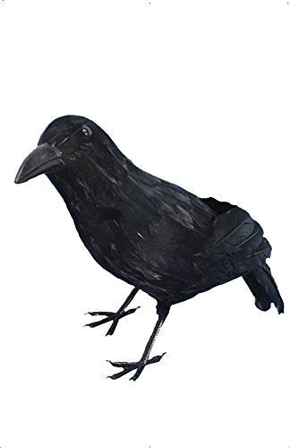 Crow, Black, Feathered, 33cm