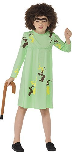 Roald Dahl Mrs Twit Costume, Green, with Dress, Wig, Eyebrow & Walking Stick -  (Size: Large Age 10-12)
