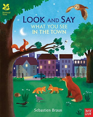 BRAUN,SEB - NT: LOOK AND SAY TOWN BOOK
