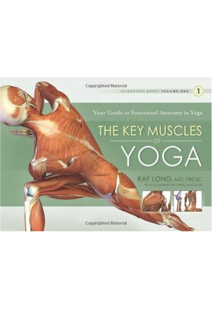 The Key Muscles Of Yoga Volume 1 Himalayan Institute