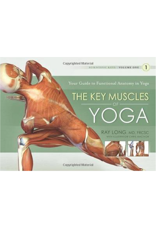 The Key Muscles of Yoga: Volume 1