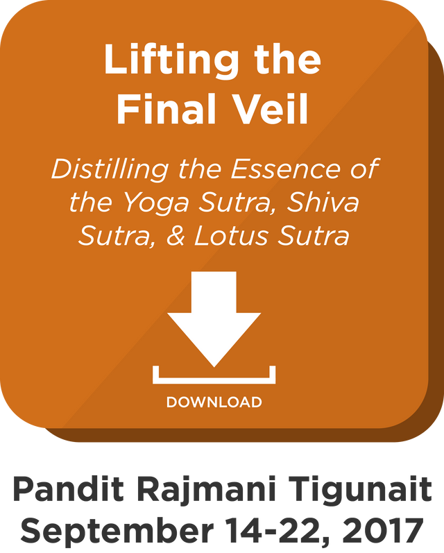 Lifting the Final Veil: Digital Download