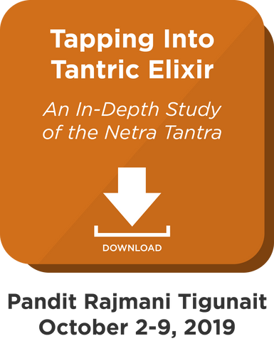 Tapping into Tantric Elixir: Digital Download
