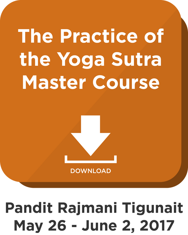 Practice of the Yoga Sutra Master Course: Digital Download