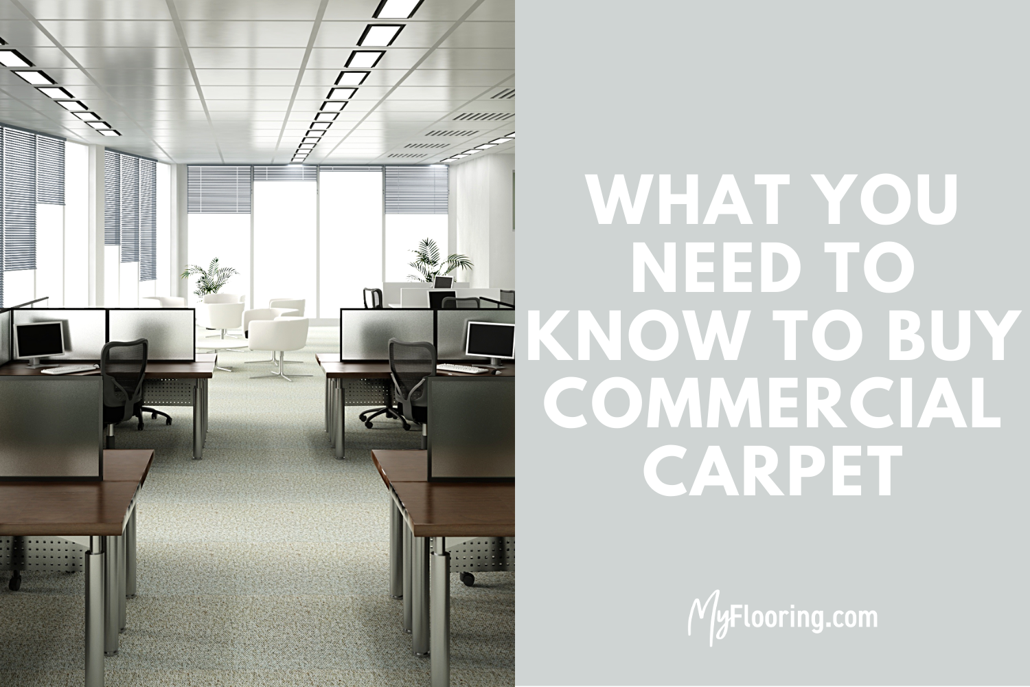 Commercial Carpet Buying Guide: Benefits, Advantages, & What to Consider