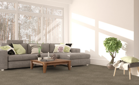 Sand Bluff - Earth Toned Nature Inspired Carpet Color