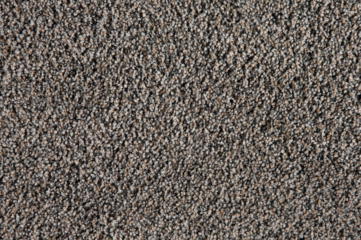 Gray Lifeproof Carpet - 3-Color Ash Grove