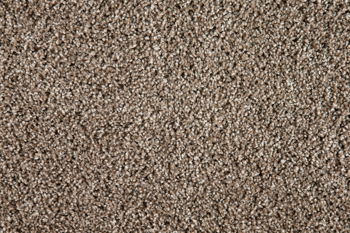 Brown Lifeproof Carpet - 3-Color Pavestone