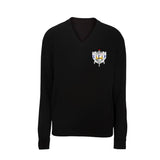 Sigma Gamma Rho V-neck Sweater