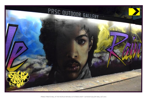 Prince Night Wall Close Up