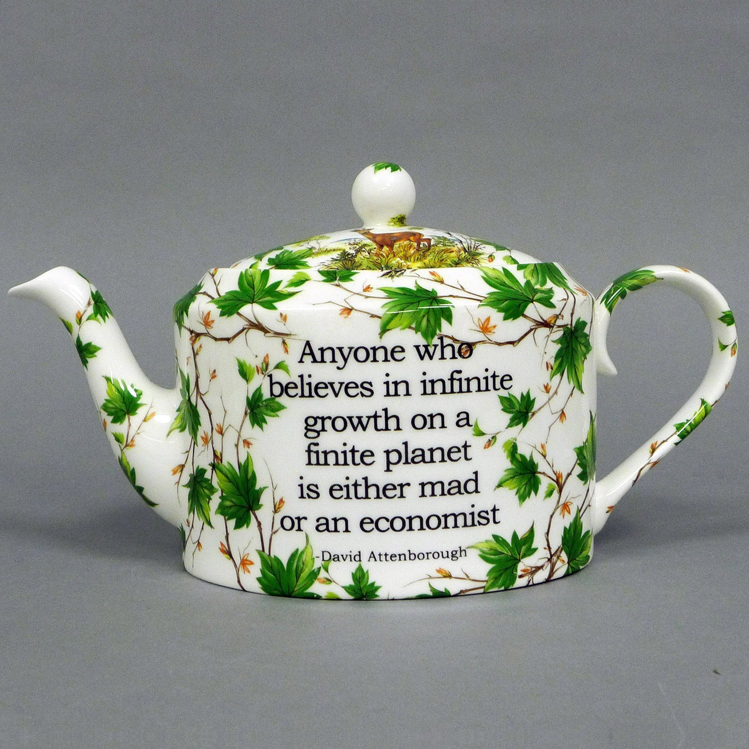 David Attenborough Teapot