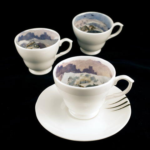 Bristol Bear Cup and Saucer Various