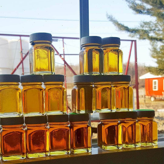 Samples of grades of maple syrup during production.