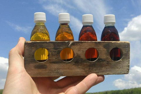 A bluebird day on the farm through the grades of maple syrup.