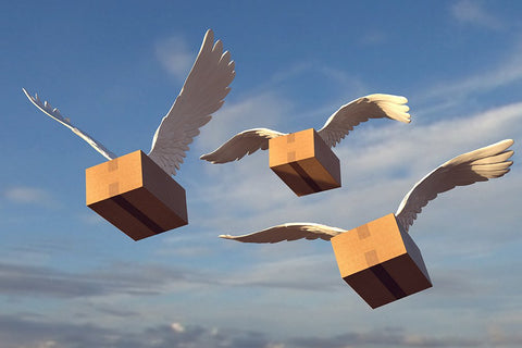 Boxes filled with party favors shipped by our different carriers, not the birds!