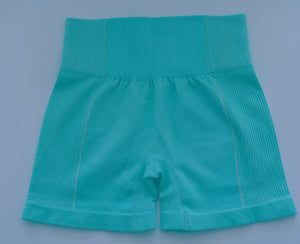 Iconic Seamless Flex Shorts Aqua