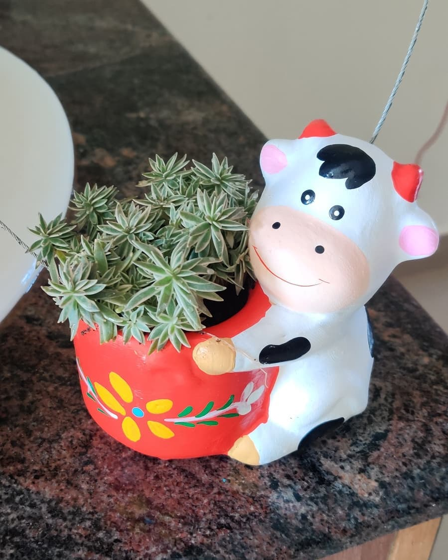 Terracotta Hanging Cow Planter