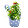 ecofynd Round Polka Dot Balcony Railing Planter with Detachable Handle, Blue - Ecofynd Online Home and Garden Store