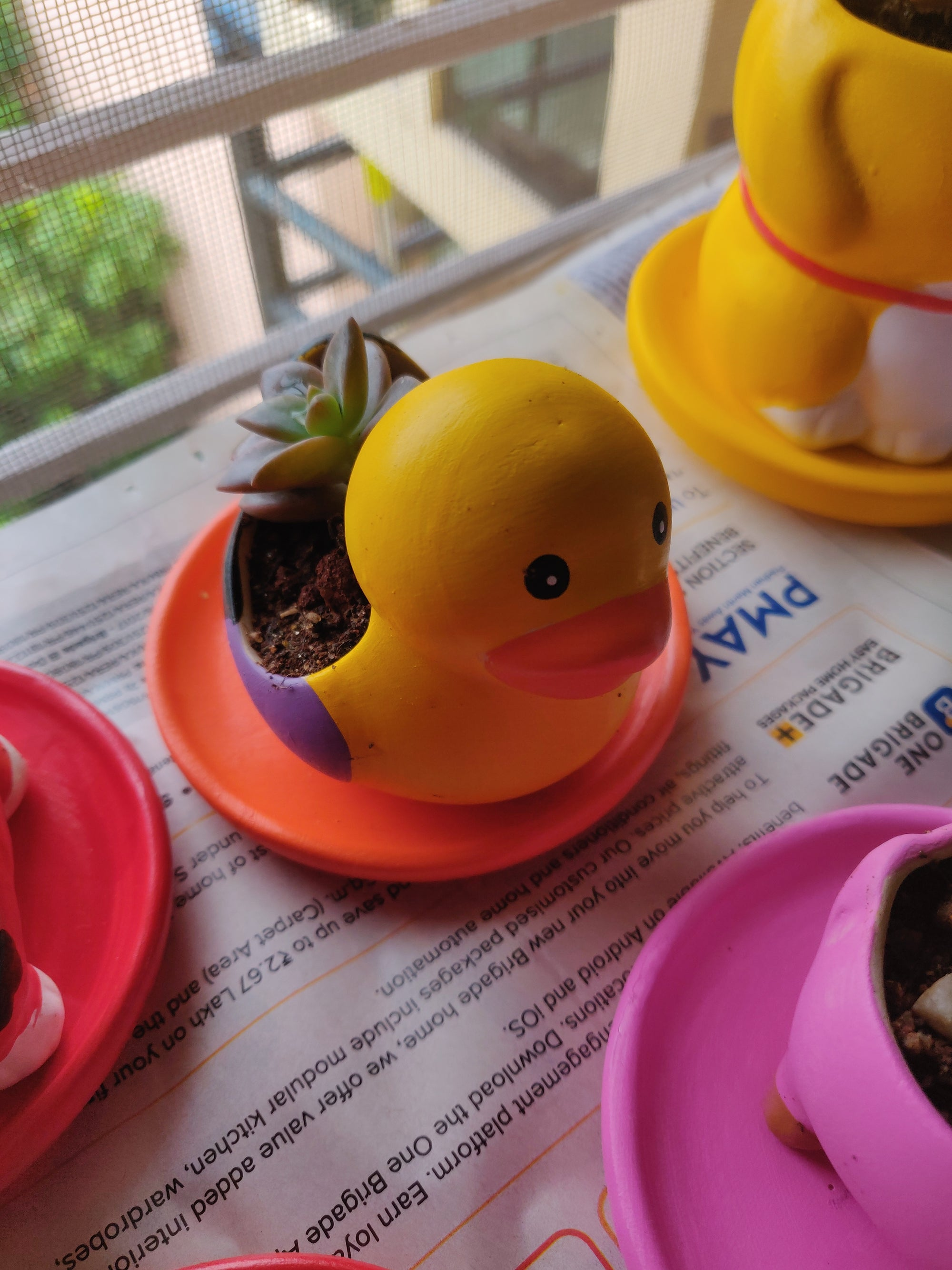 Terracotta Miniature Duck Planter