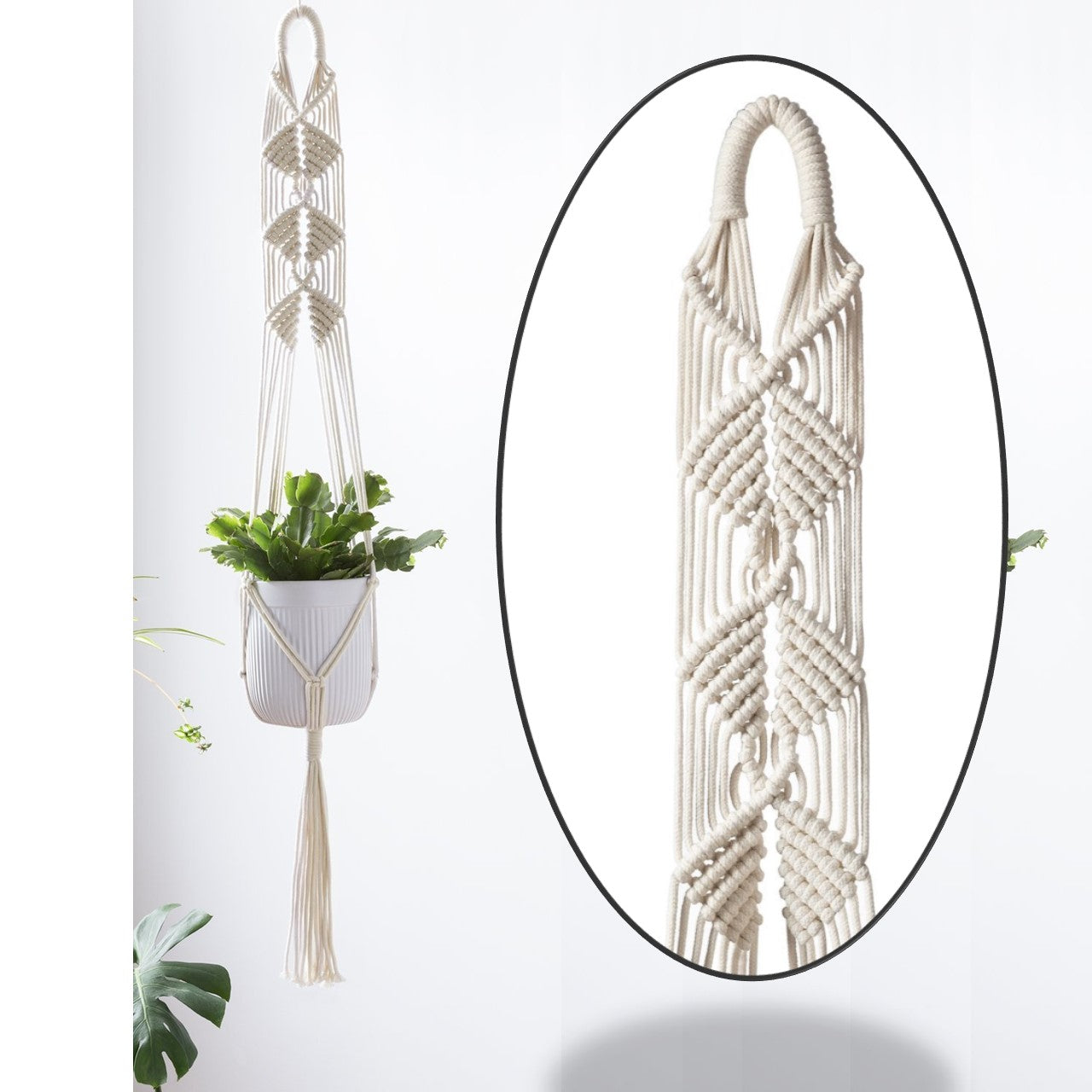 ecofynd Macrame Cotton Plant Wall Hanger [WITHOUT POT], 1 Pack - Ecofynd Online Home and Garden Store
