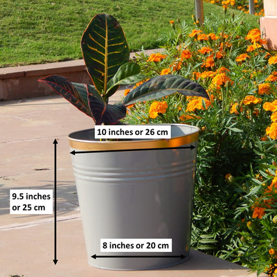 Round Metal Bucket Planter, Pack of 3