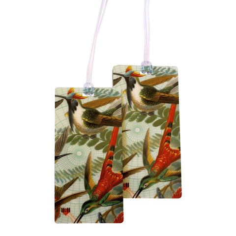 Beautiful Hummingbirds Luggage Bag Tag Set - 2 pc, Large by 11:11 Enterprises