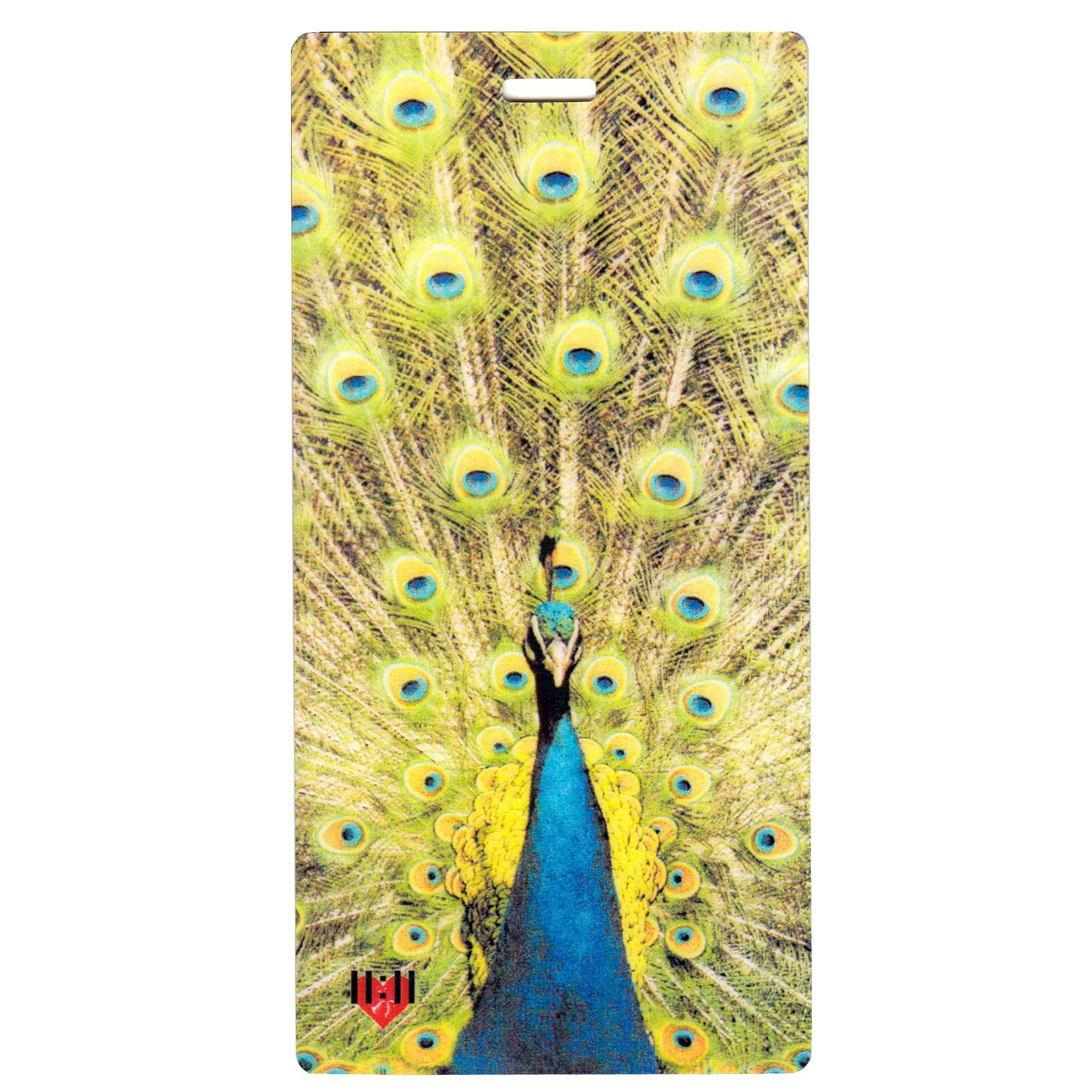 Proud Peacock Luggage Bag Tag Set - 2 pc, Large by 11:11 Enterprises