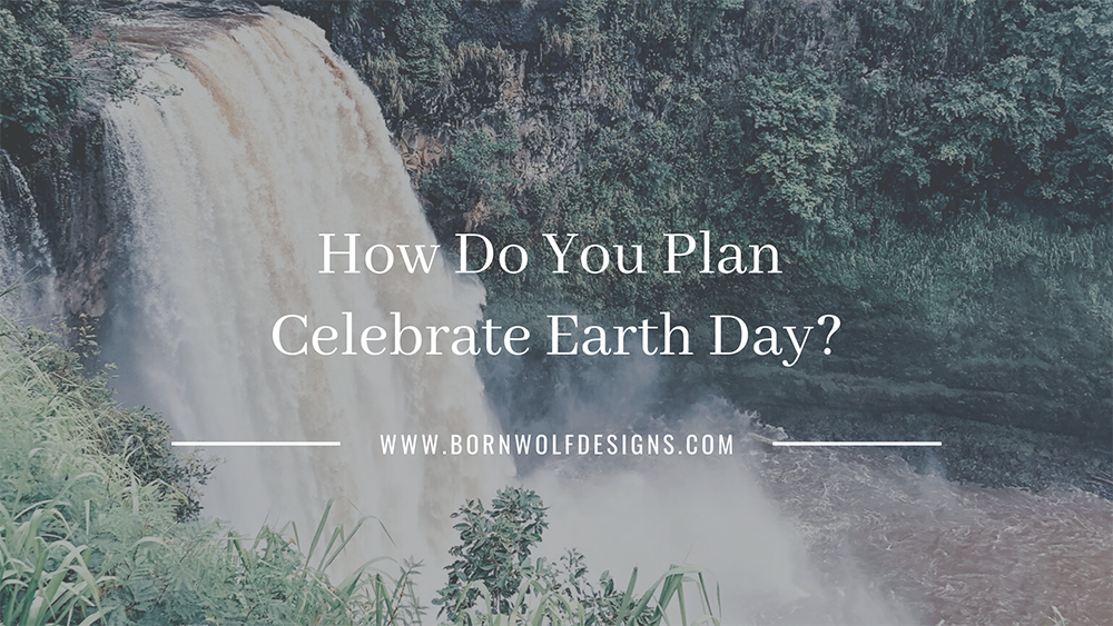 How Do You Plan Celebrate Earth Day?