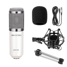 Load image into Gallery viewer, Professional Studio Broadcast & Recording BM-800 Condenser Microphone with Shock Mount