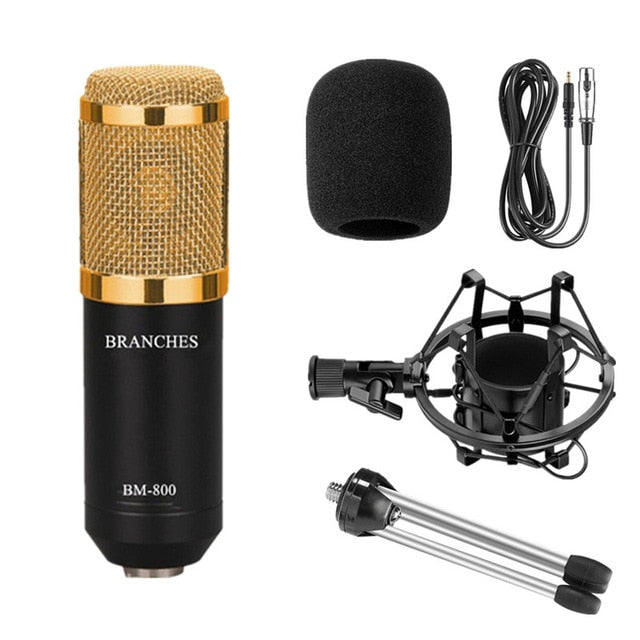 Professional Studio Broadcast & Recording BM-800 Condenser Microphone with Shock Mount