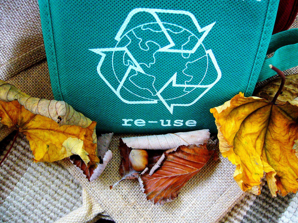 green reuse bag eco friendly recycle