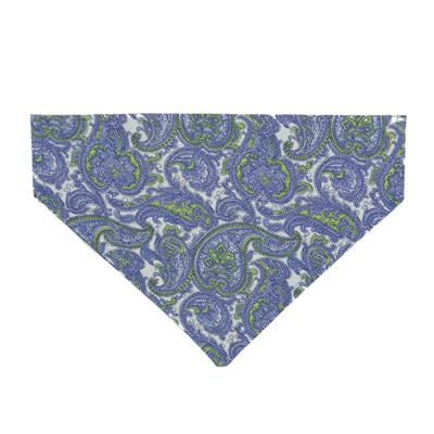 Paisley 'licious Dog Bandana - Over the Collar Style
